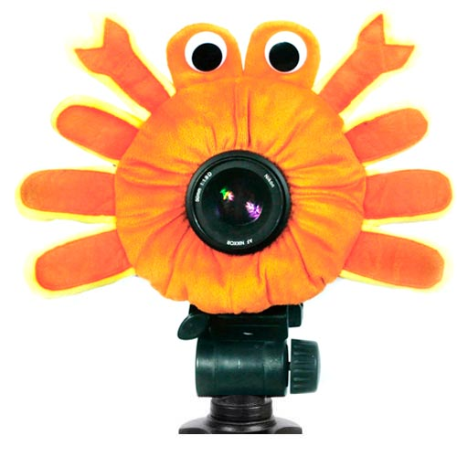 accesorio_para_camara_fotografica_para photoshoot_publivitario_de_niños_cangrejo