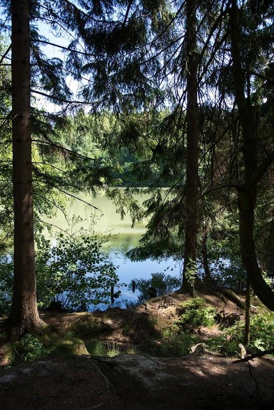 Schöne Waldseen