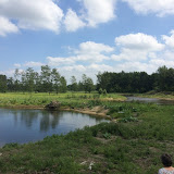2015 - Scouting Landgoed - IMG_7890.JPG