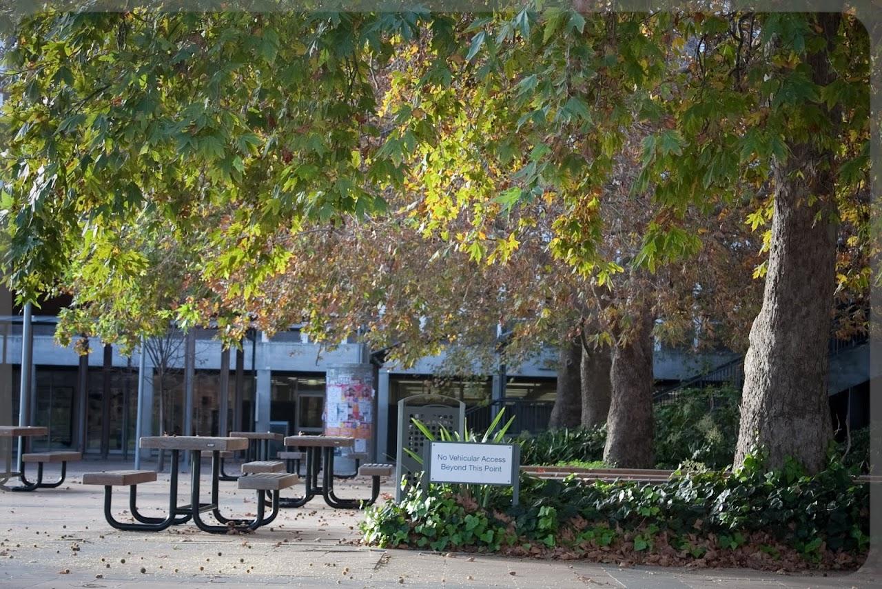 2010 06 13 Flinders University - IMG_1359.jpg