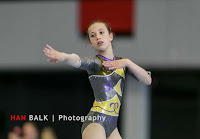 Han Balk Fantastic Gymnastics 2015-1995.jpg