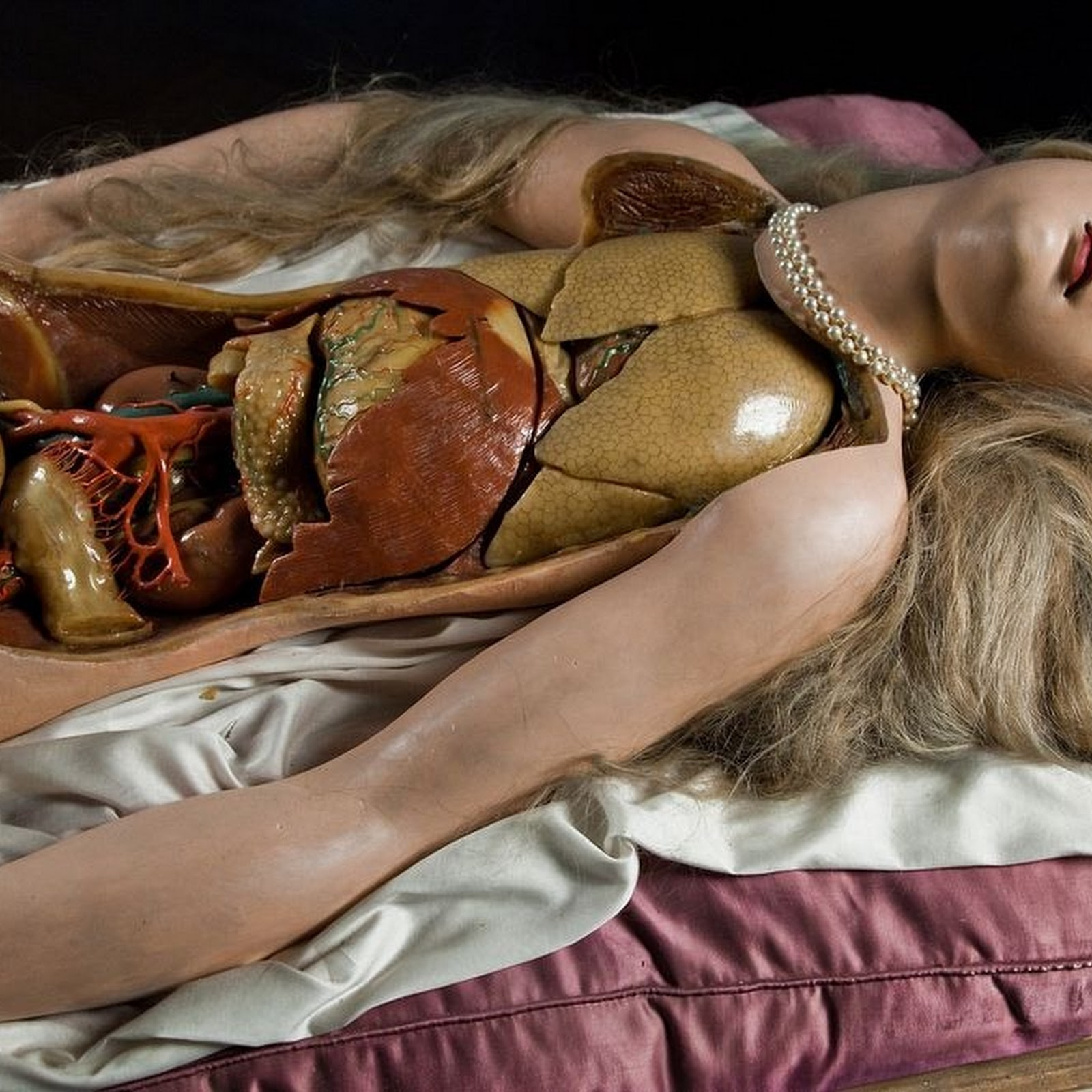 The Strangely Seductive 18th Century Anatomical Wax Models
