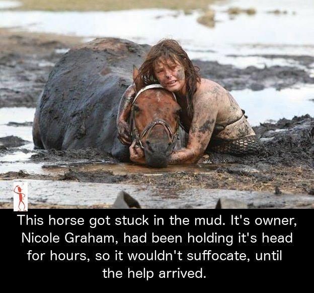 Animals cruelty in Nigeria