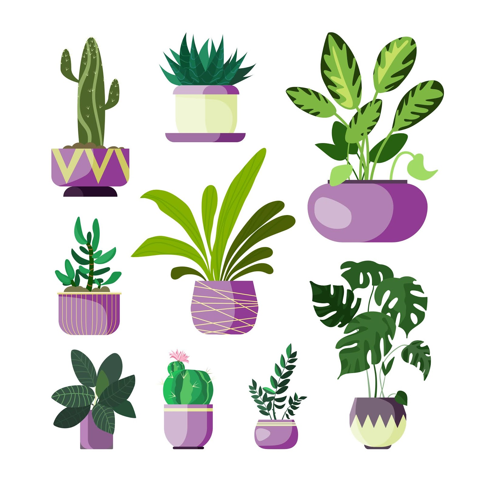 Flowers In Pots Set Free Download Vector CDR, AI, EPS and PNG Formats