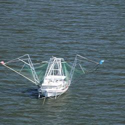 Coastal Flight November 2, 2013 138