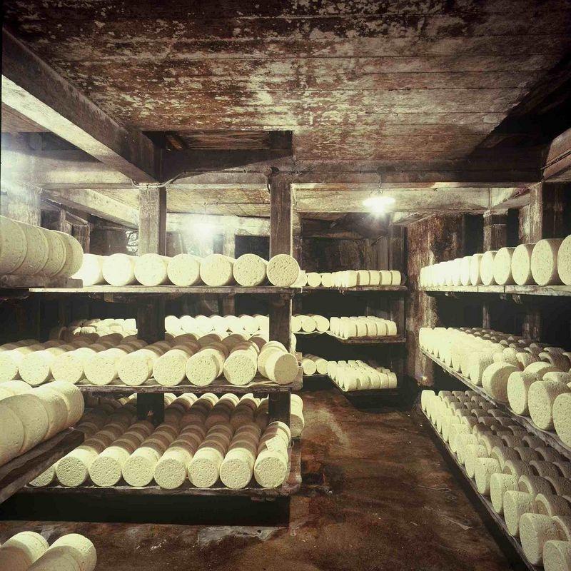 roquefort-formaggio-cave-5