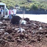 Hawaii Day 8 - 100_8069.JPG