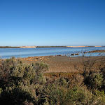 2008_04_16_Coorong_to_Adelaide