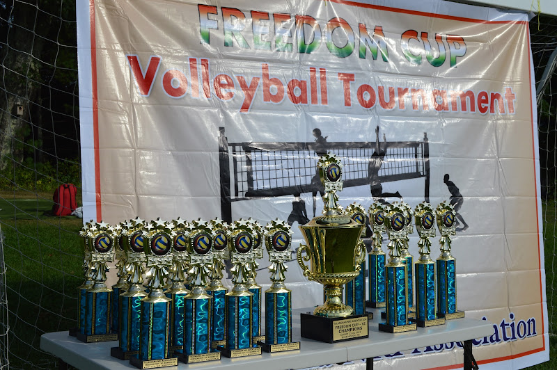 TeNA Freedom Cup Volleyball Boston 2015 - DSC_0760.JPG