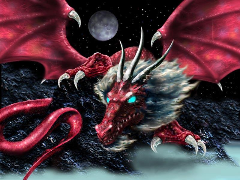 Dragon Elder, Dragons