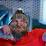 Brooks Tiller's profile photo