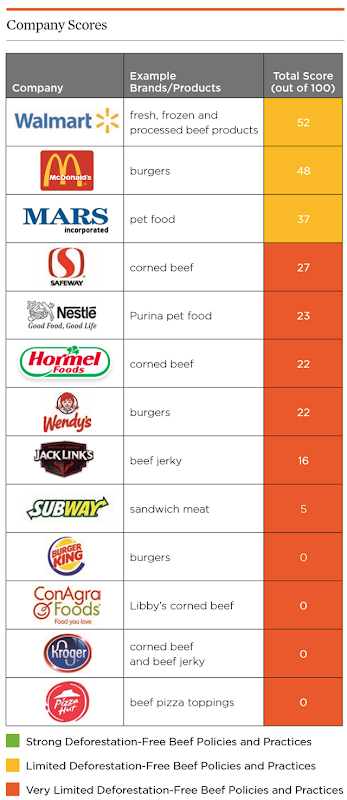 Scores for the deforestation policies and practices of 13 fast food, retail, and manufacturing companies that have a presence in the US marketplace and also source beef from South America. All 13 of these large consumer goods companies need to strengthen their deforestation-free beef policies and practices. As shown here, not a single company currently has strong policies and practices. Graphic: UCS