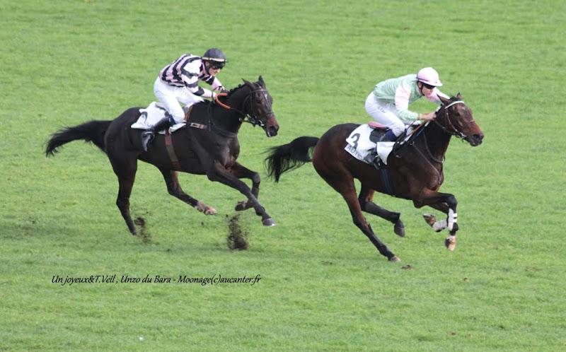 Photos Auteuil 7-11-2015 (48h de l'obstacle) IMG_6240