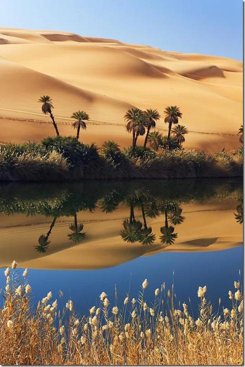 Desert scenery002