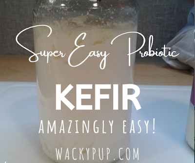 Simplest explanation of how to make kefir I've ever seen!! Clear, simple, quick & easy!