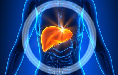 What You Need To Know About Liver Functions