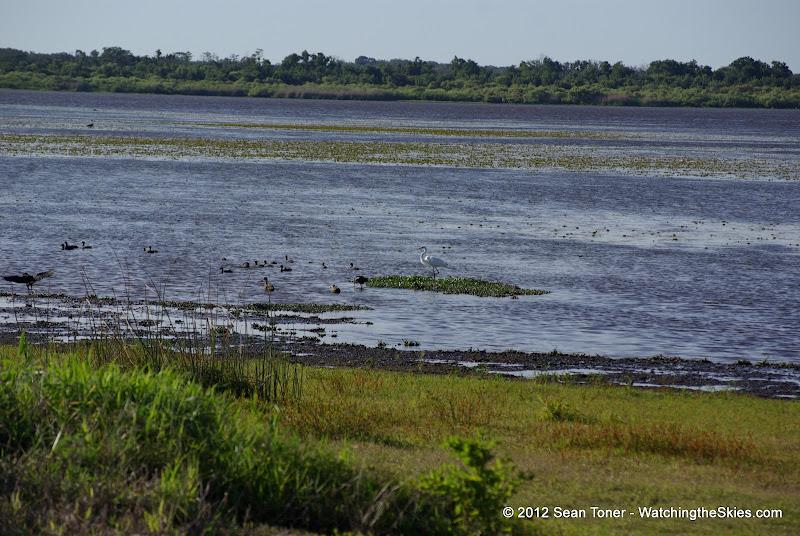04-06-12 Myaka River State Park - IMGP4448.JPG