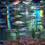 Downtown Aquarium - 116_4027.JPG