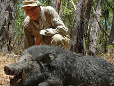 wild_boar_hunting_18L.jpg