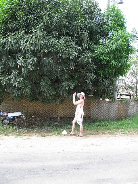 Из зимы в лето. Филиппины 2011 - Страница 3 IMG_0088%252520%2525283%252529