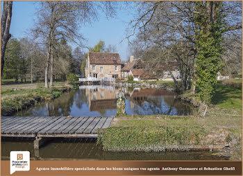 moulin à Chaumont-sur-Tharonne (41)