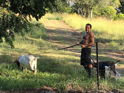 goat-herder-Nick-2017-03-2-06-57.JPG