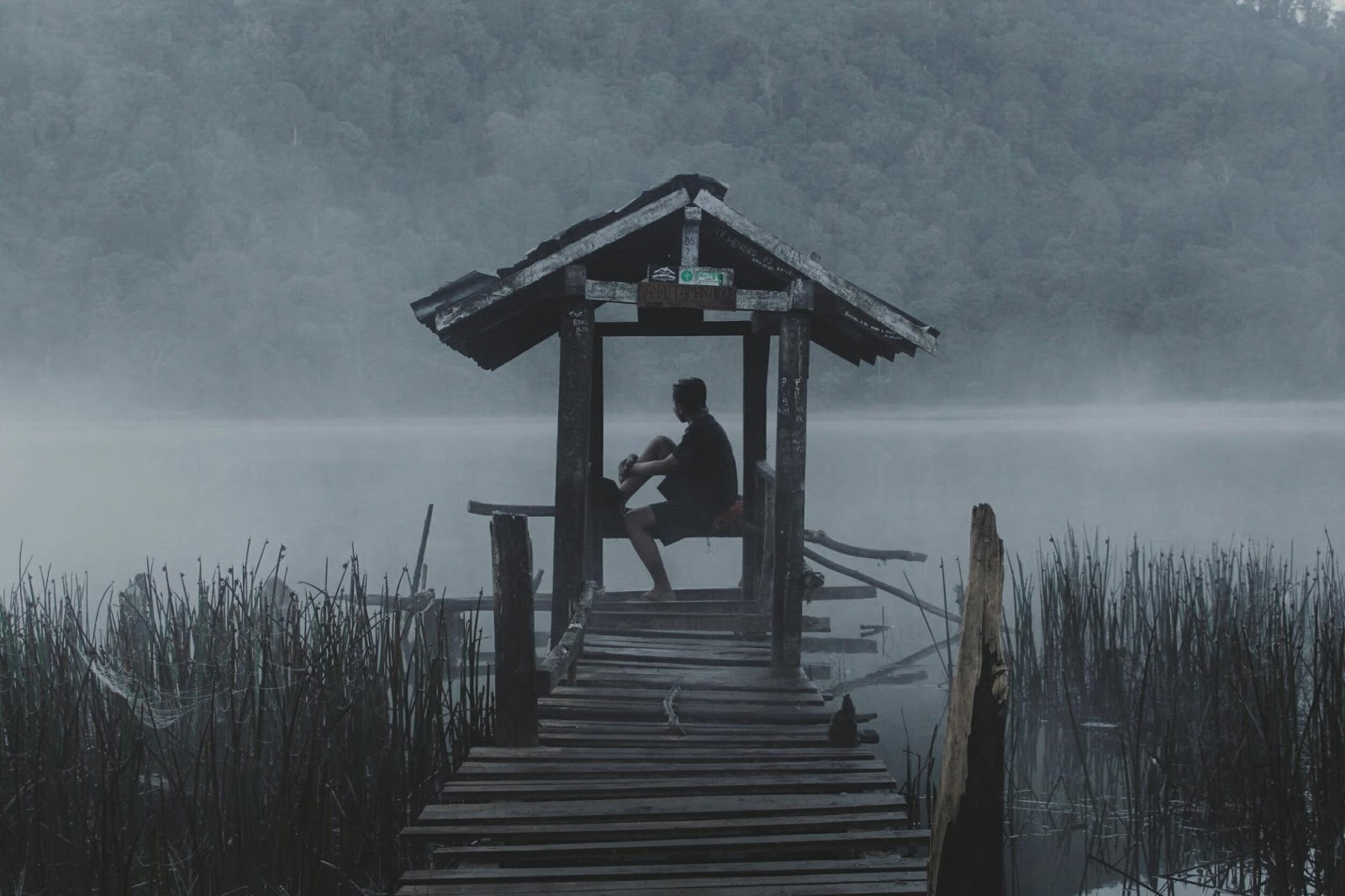 Danau Taman Hidup Traveler Minim Dana
