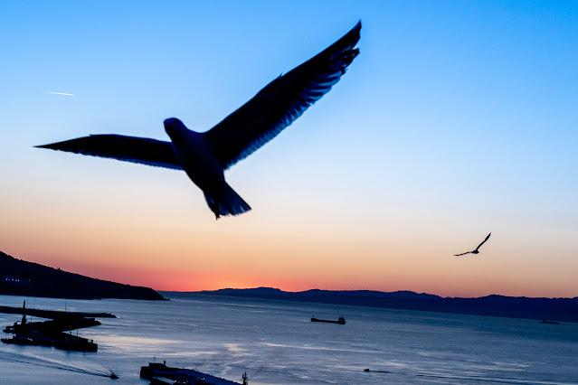 Desequilibrio por inclinación, foto de Carlos Larios