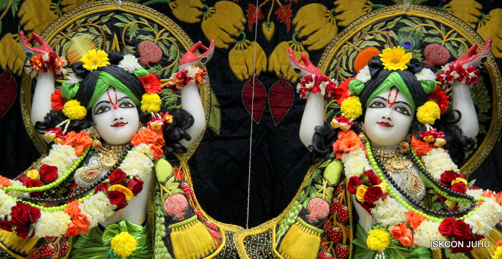 ISKCON Juhu Sringar Deity Darshan on 19th Nov 2016 (40)