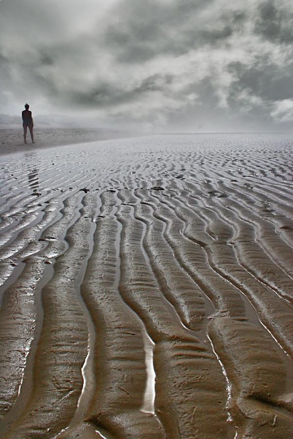 Holland by Johannes Bichmann - Landscapes Travel