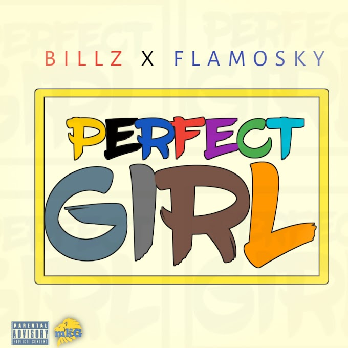 Billz Ft Flamosky - Perfect Girl (Mp3 Download