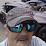 Wayne Leone's profile photo