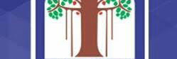 Vadodara Municipal Corporation (VMC) Recruitment for 144 Junior Clerk, Case Writer, Security Guard & Other Posts 2020