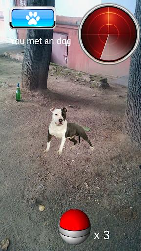 Pocket Puppy GO