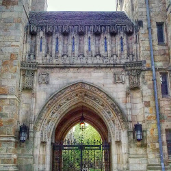 Yale University's profile photo