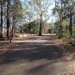 A bit of road walking (202984)
