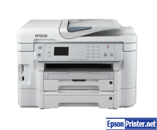 How to reset Epson WorkForce WF-3531 printer