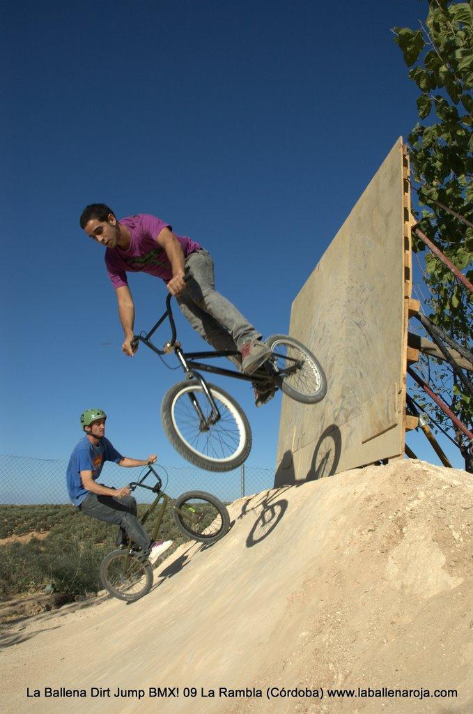 Ballena Dirt Jump BMX 2009 - BMX_09_0081.jpg