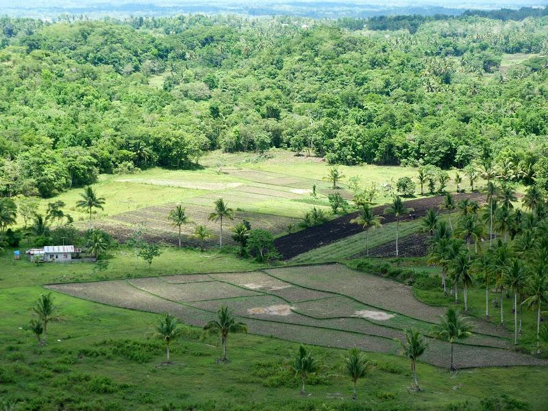 Bohol et Panglao - philippines1%2B1365.JPG