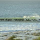 _DSC7369.thumb.jpg