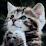 Saslik TVKing's profile photo