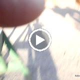 Oct-Nov 2013 - s0p8rJiyHIdaz-L3fiVGDP_LAasVaRe_wfPYprh_3b-Xsai2A-jkqy1QKqqDQGhSAW--mTWd6as=m22