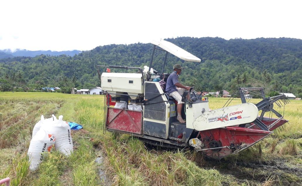 Kostratani Kec. Kulawi Selatan Sulteng Percepat Panen Dengan Combine Harvester