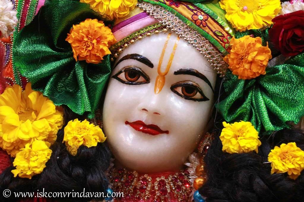 ISKCON Vrindavan Sringar Deity Darshan 14 Jan 2016 (20)