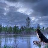 Flood Watch Missoula, Montana ©Mark Mesenko. Prints available at www.mesenko.com