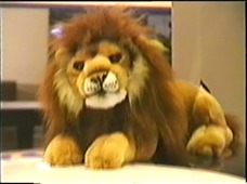 2000.02.19-008 Lion Peugeot