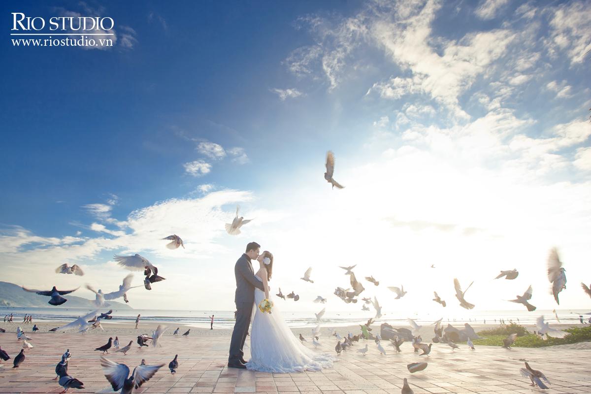 Hôn nhau giữa bầy chim