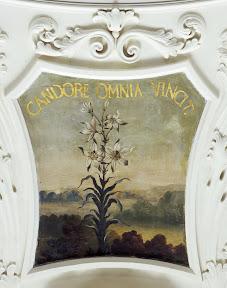 Малые плафоны Парадного зала Кадриоргского дворца – лилия