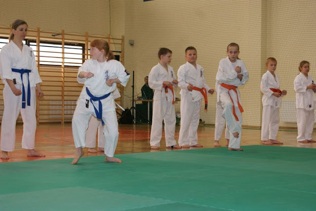 DO 2011 Pokaz karate - DSC00091_1.JPG