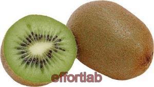 buah-kiwi